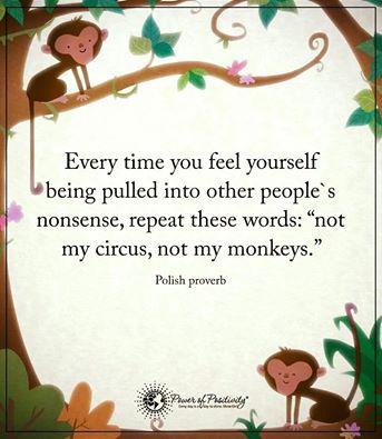 not-my-monkeys